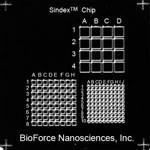 Sindex Chip